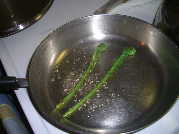 Photo of ostrich fern fiddleheads cooking.